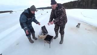 Рыбалка в марте на реке Обва Закрытие сезона по белой рыбе