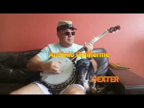 TURKEY IN THE STRAW in Banjo 5 Strings