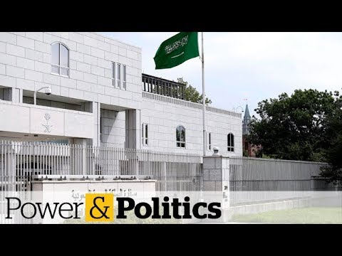 Canada reviewing relationship with Saudi Arabia | Power & Politics