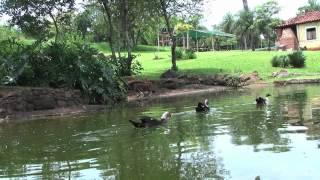 turismo cultura Puerto Rico Misiones