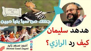 هدهد النبي سليمان ودفاع الإمام الرازي عن عقلانية القصة مع أحمد سعد زايد