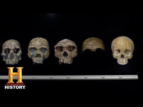 Ancient Aliens: EVIDENCE OF ALIEN INFLUENCE ON HUMAN EVOLUTION (Season 14) | History