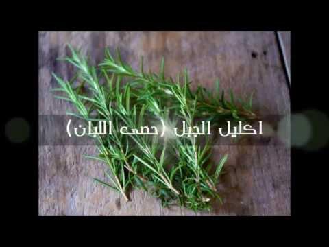 Arab Organization For Alternative Medicine - 04