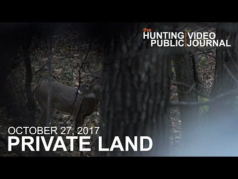 Private Land: October 27 - Close Encounter In The Timber Stand | The Hunting Public