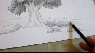 How To Draw A Tree in Landscape - Drawing Techniques