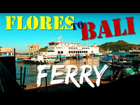 HOW TO GET FROM FLORES TO BALI | BY FERRY AND BUS | Travel Vog 94