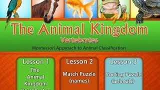 The Animal Kingdom: Vertebrates