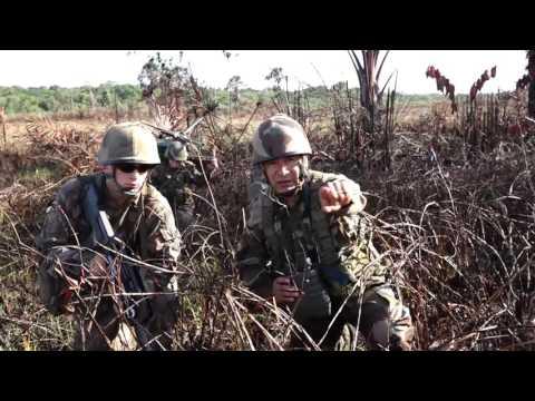 Campagne de tirs au Suriname 2016 courte