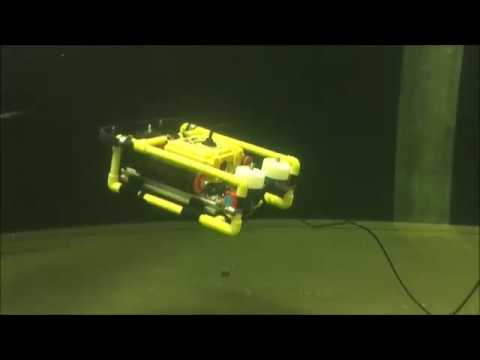 Remotely Operated Underwater Vehicle (ROV)