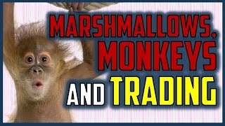 HOW TO BE A MORE CONSISTENT TRADER (Marshmallows, Monkeys and Trading)