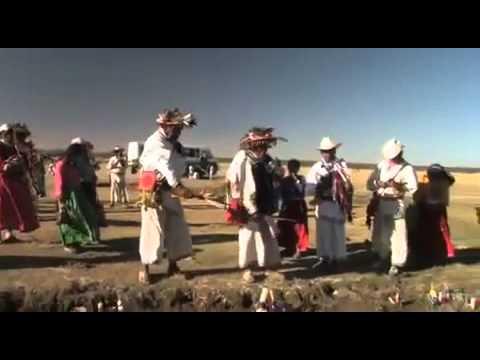 Flores en el desierto - Documental