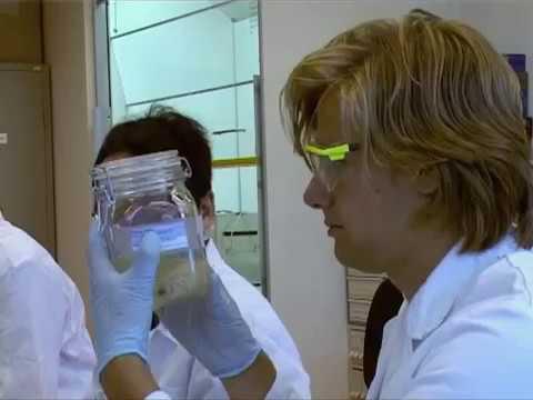 College of Pharmaceutical Sciences (Pharmazie) an der Utrecht University studieren