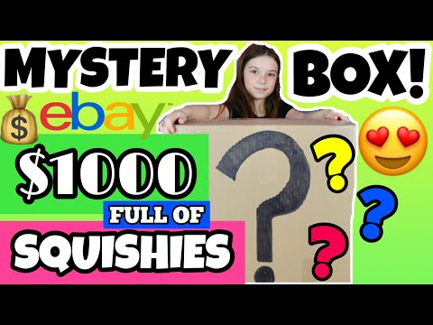 OMG KID BUYS $1000 EBAY MYSTERY BOX FILLED WITH SQUISHIES!!! HUGE SQUISHY PACKAGE!! Squishy Haul!!