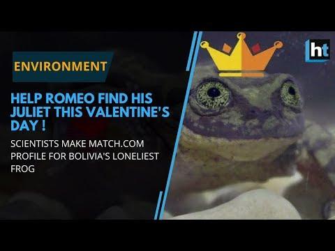 Ashley - World's Loneliest Frog Gets A Girlfriend!