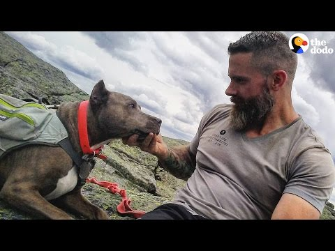 Recovering Addict And His Dog Rescued Each Other | The Dodo
