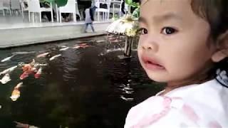 Satu Dua Tiga Empat  |  Lagu Anak Indonesia