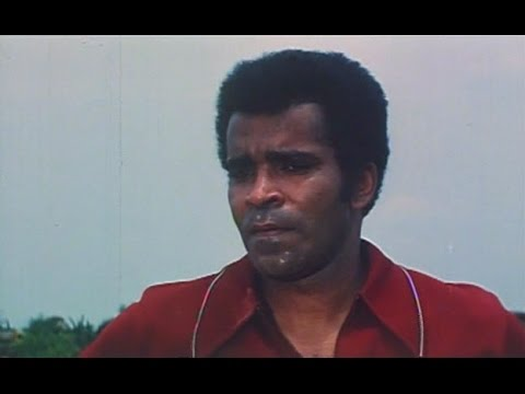 Preview Clip: S.T.A.B. (1976, starring Greg Morris)