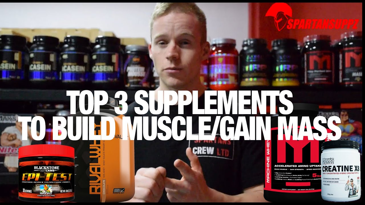 Top 3 Supplements to Build Muscle & Gain Size in 2016 Muscle Mass |  Spartansuppz com