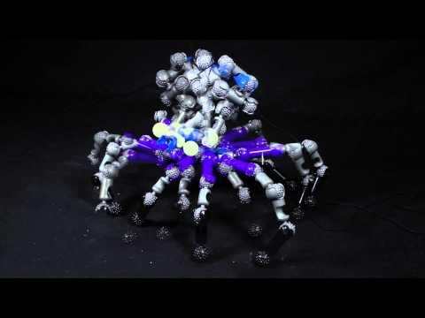 ZOOB   Creepy Glow Creatures 0Z14003