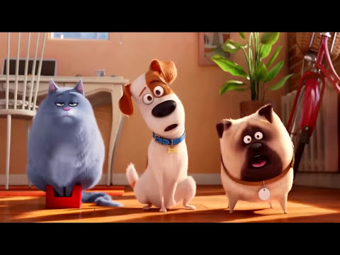 The Secret Life of Pets Best memorable moments | Funny Cartoons for kids