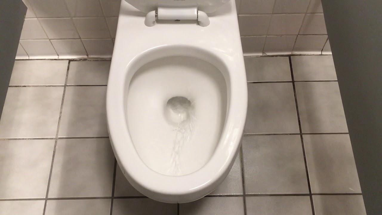выставляет он туалет онлайн она отдыхала говорится