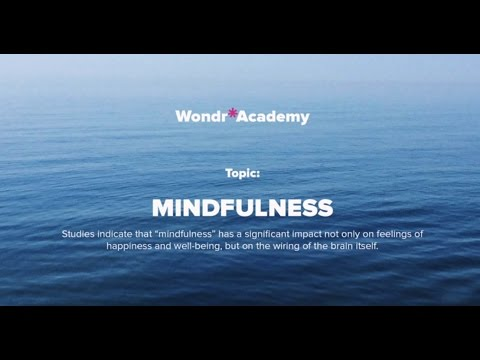 Talk 4 Topic: Mindfulness - Paul Christelis, MA Clin Psych; MSc Mindfulness-Based Approaches