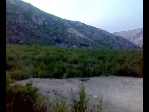 kala khel Nawaz Afridi