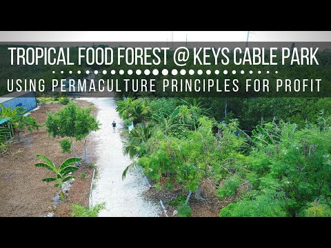 Tropical Food Forest Tour: Eco-Tourism through Profitable & Conscious Attraction (Keys Cable Park)