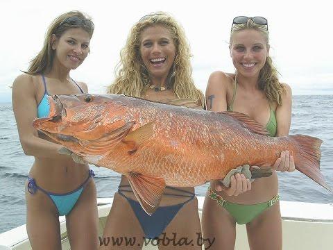 Название голых рыб Вам