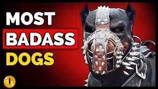 TOP 10 MOST BADASS DOG BREEDS