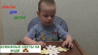 Опыты для детей Цветы на воде(Опыты для детей !!В этом видео покажем как распускаются бумажные цветы на воде !!!, 2016-06-06T07:55:58.000Z)