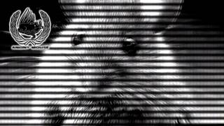 Anony Mouse - We Are Watching You - 2013
