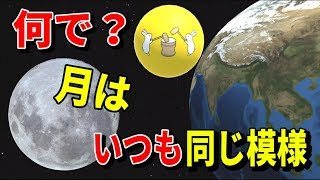 月の模様がいつ見ても同じなのはなぜなのか?【物理エンジン】