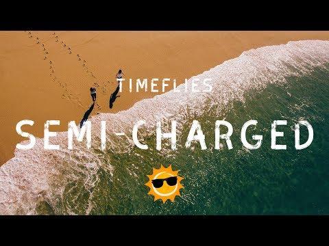 Timeflies - Semi-charmed