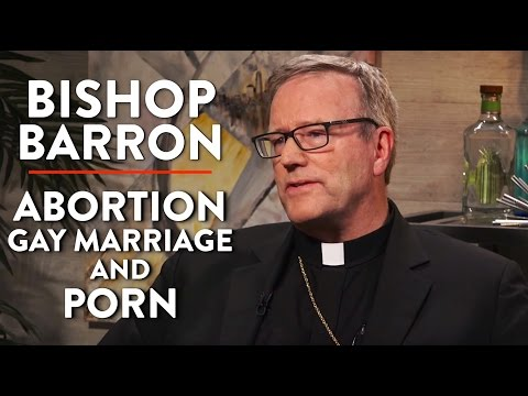 Abortion, Gay Marriage, and Porn (Bishop Barron Interview Pt. 2)