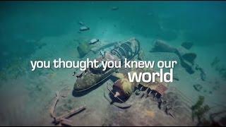 World of Diving (PC) DIGITAL