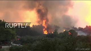 Greece  Firefighters battle huge wildfires in Zakynthos