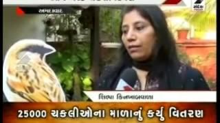 Sandesh News :  True Celebration of  World Sparrow Day