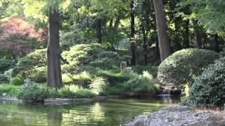 Musique pour Dormir - New Age - Musique Relaxante