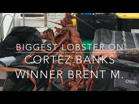 2018 California Lobster Closure