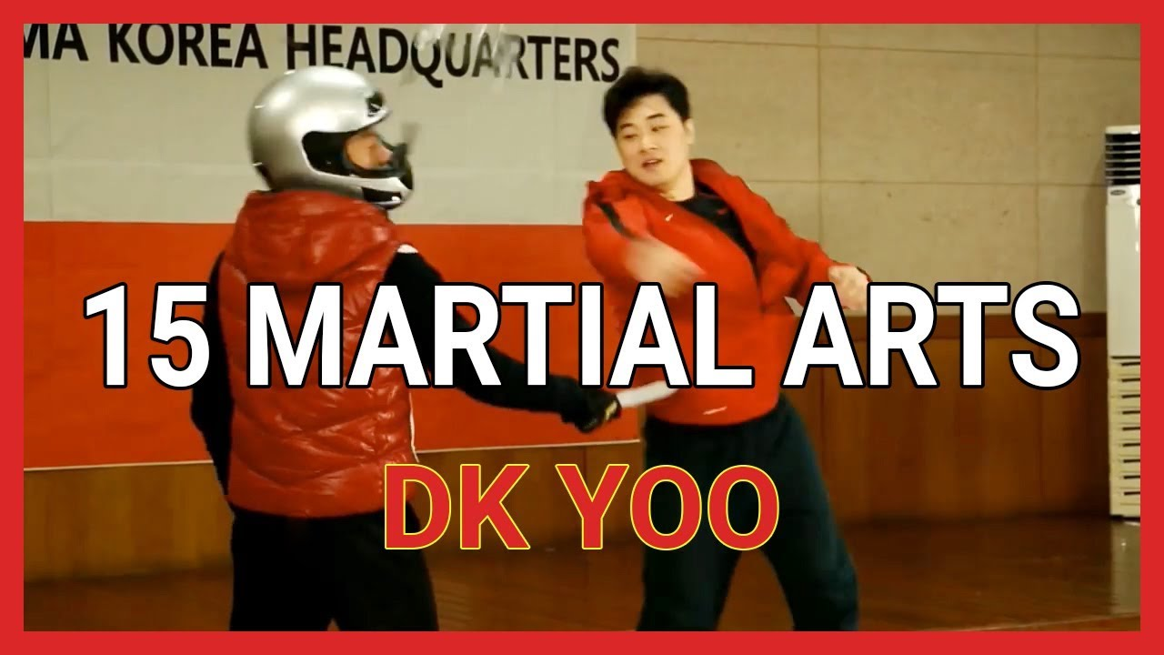 Image result for dk yoo martial arts