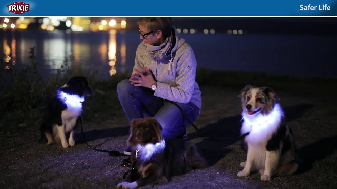 Trixie 30081 Sicherheitsweste f/ür Hunde 39 50 cm S