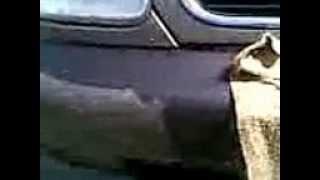как красят авто(покрасили авто в симферополе Равшан и Джамшуд., 2013-04-22T08:34:20.000Z)