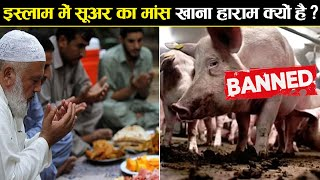 मुस्लिम सूअर का मांस क्यों नहीं खाते? | Why Pork is Haram in Islam?