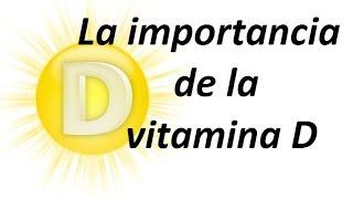 Los  5 Alimentos Con Más Vitamina D