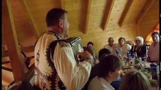 музиканти колиби