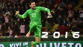 Danijel Subasic 2015/2016 HD ● Bests Saves ● AS Monaco