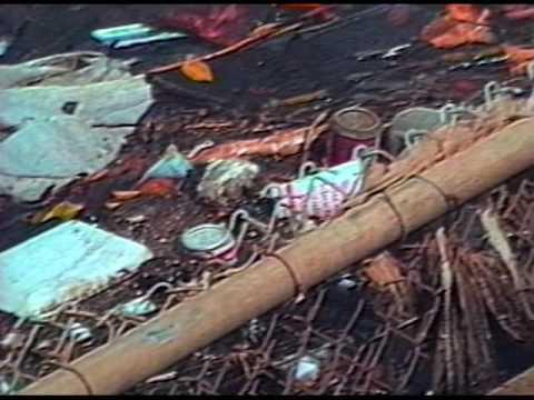 Pollution at Hawaii's Beaches (Punavision - May 1992)