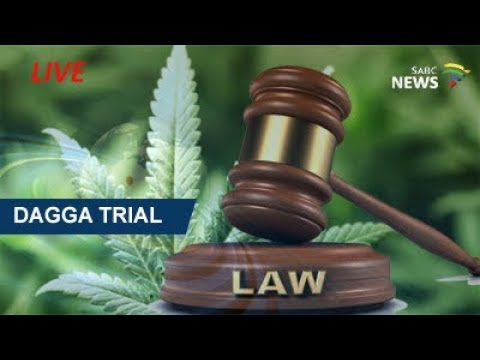 Dagga Trial, 4 August 2017