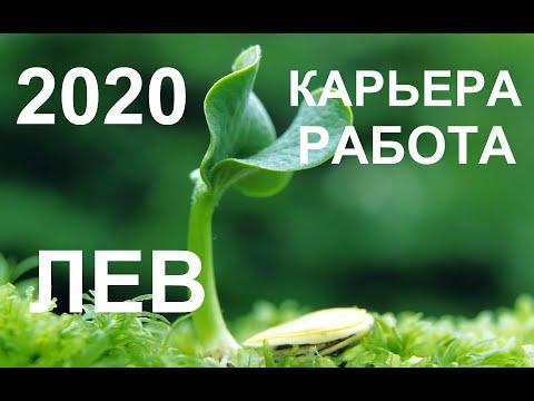 ♌ЛЕВ. КАРЬЕРА. РАБОТА. ПРОГНОЗ НА 2020 ГОД. ТАРО-ПРОГНОЗ.
